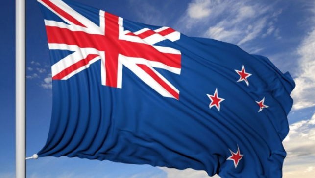 Binary option nz